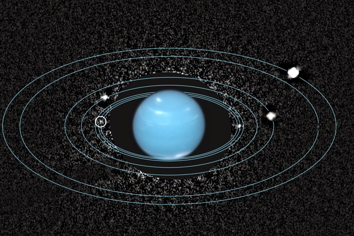 Neptune and All Its Moons - Pics about space