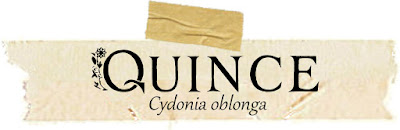 Magical and Medicinal Uses of Quince. Includes FREE BOS page!