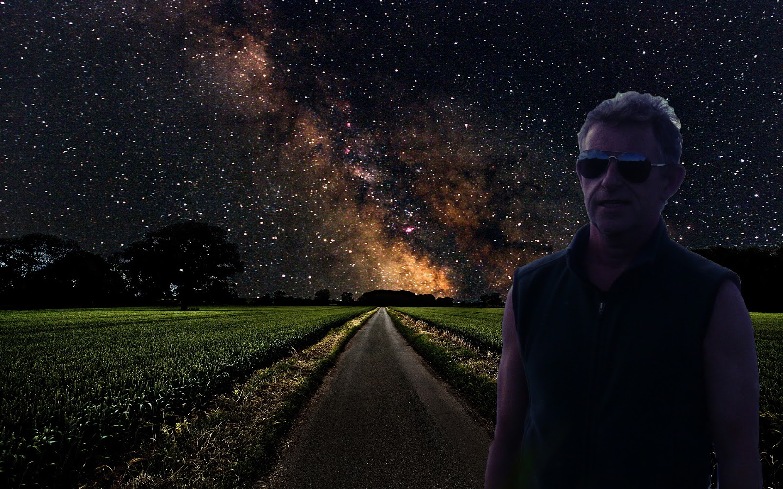 Michael Stearns Planetary Unfolding