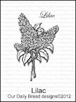 ODBD Lilac Single