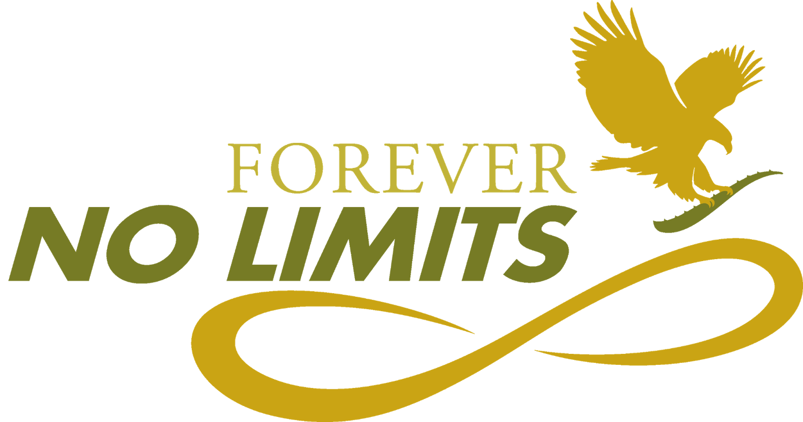 Usage: Forever and for ever can both be used to say that something is without end. For all other meanings, forever is the preferred form.