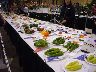 Impressive peppers, and more. A fair somewhere that I have no recollection of.