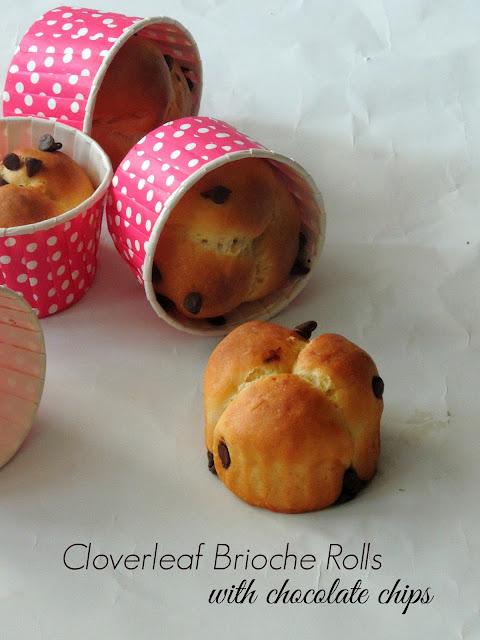 Chocolate Chips Cloverleaf brioche rolls