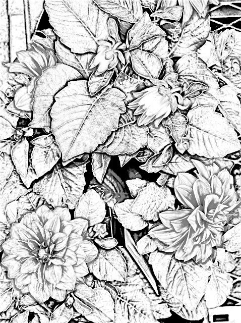 Georgia O'keeffe Coloring Pages | # Fresh Coloring Pages
