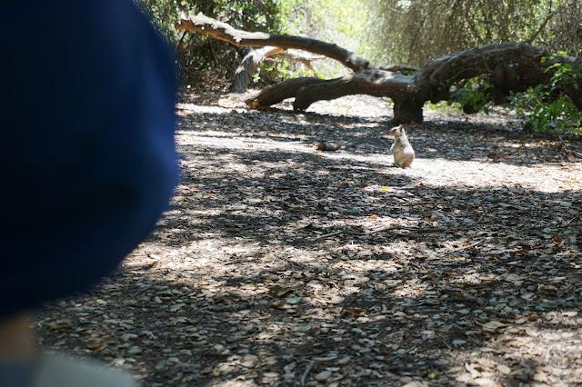 El Dorado Nature Park Hours