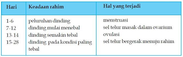 Pengertian Siklus Menstruasi pada Wanita, Fase, Tanda-tanda dan Cara Menghitung Masa Subur Wanita Setelah Haid serta Gangguannya