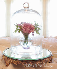 Neptune Rose Under Glass
