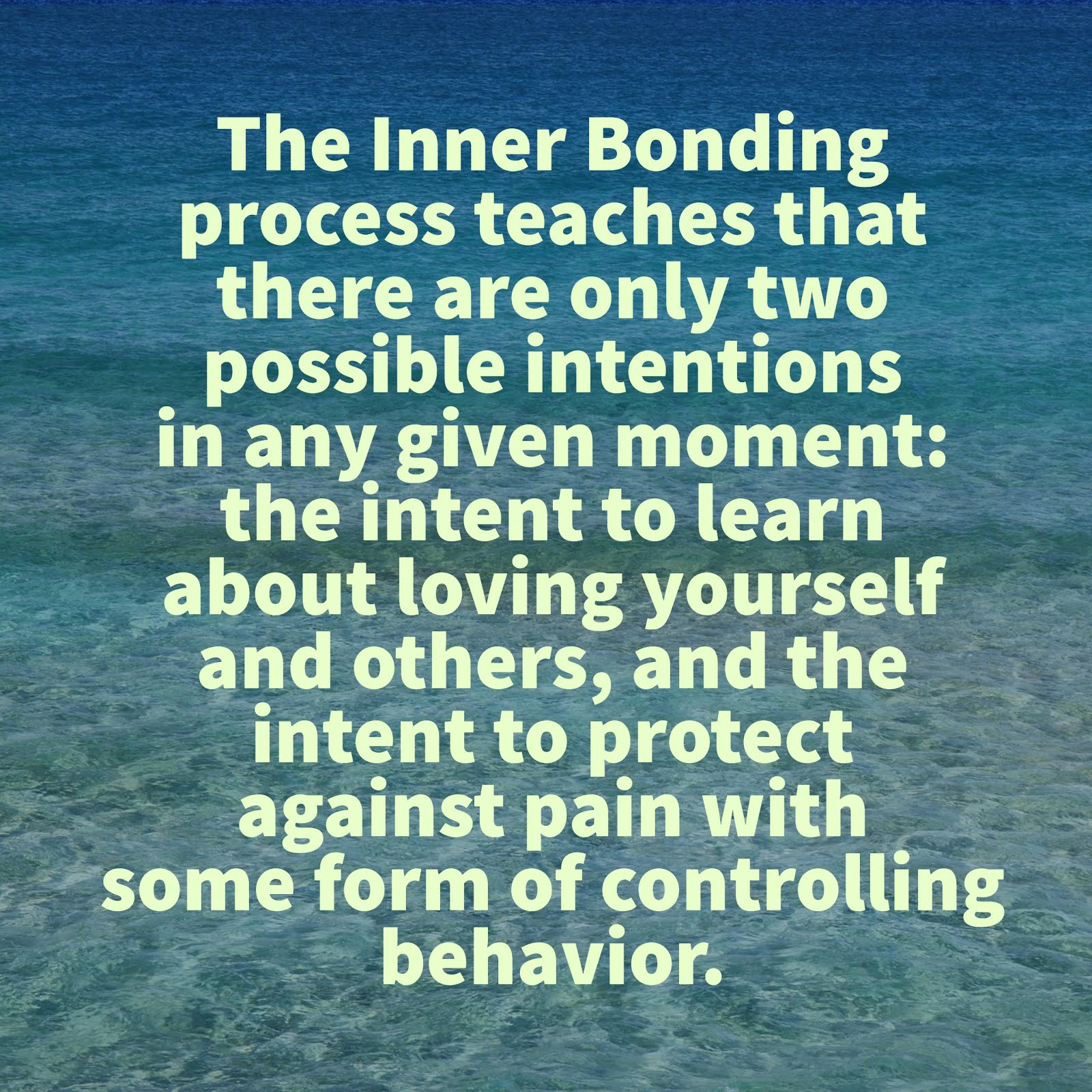 Bonding Quotes The Mindfulness Connection Quotes