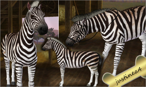 The Sims 3 : Zebra