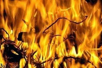 Ibu dan bapak Rasulullah saw di neraka