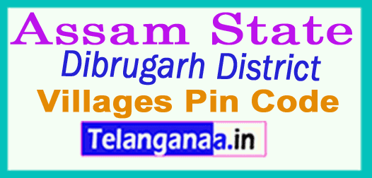 Dibrugarh District Pin Codes in Assam State