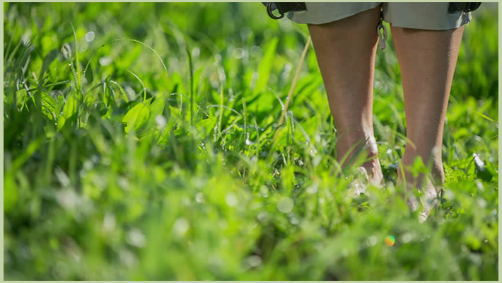 Walk Barefoot On Wet Grass