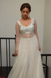 Anu Emmanuel in a Transparent White Choli Cream Ghagra Stunning Pics 039.JPG