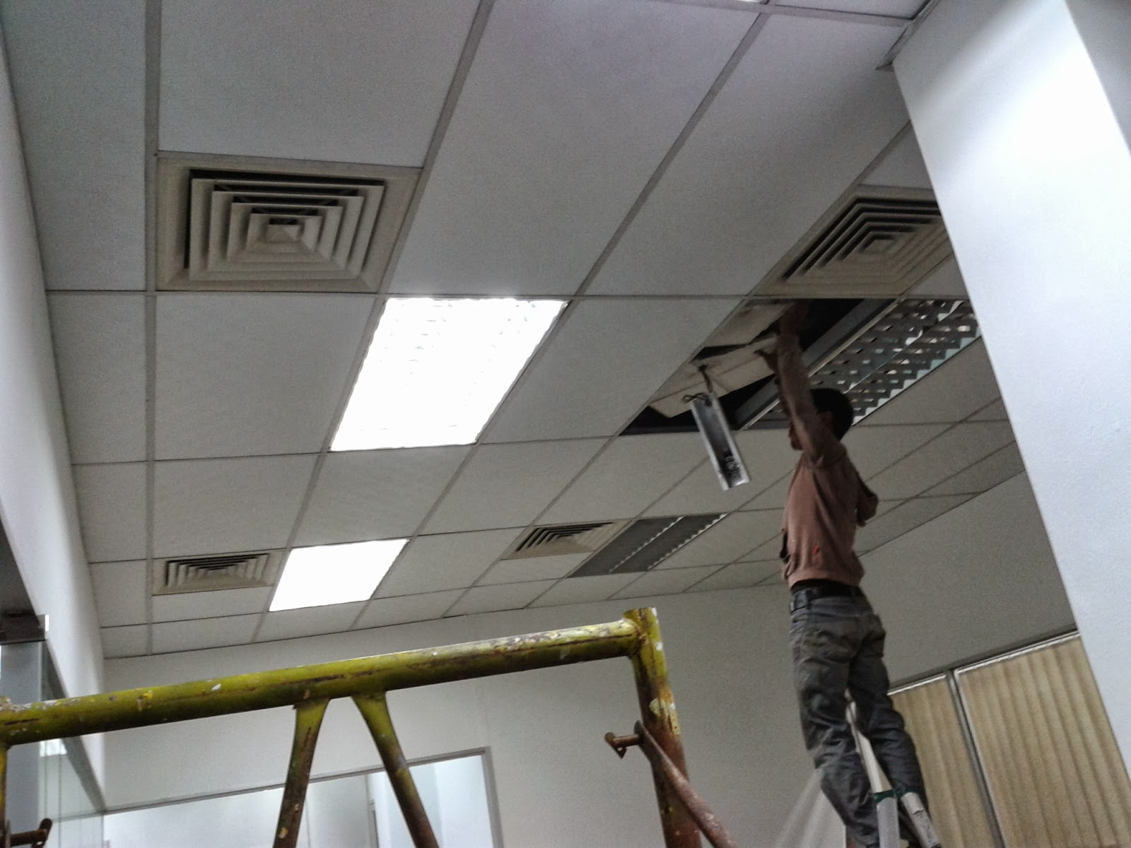 Plaster Siling Specialist