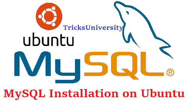 MySQL Installation on Ubuntu Linux distribution