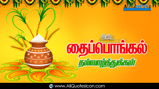 Sankranti-Thai-Pongal-Wishes-In-Tamil-Sankranti-Thai-Pongal-Festival-Wallpapers-Squotes-Whatsapp-images-Facebook-pictures-wallpapers-photos-greetings-Thought-Sayings-free