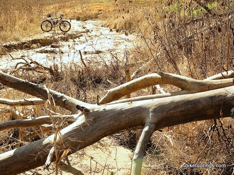 Picture of mountain bike and valley wash with tall grass and trees