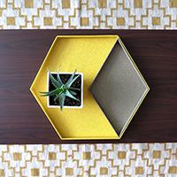 http://www.ohohdeco.com/2014/11/diy-hexagonal-tray.html