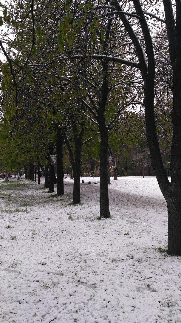 солнце мороз и ветер русская народная сказка