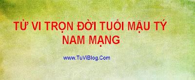 Tu Vi Tron Doi Van Menh Mau Ty