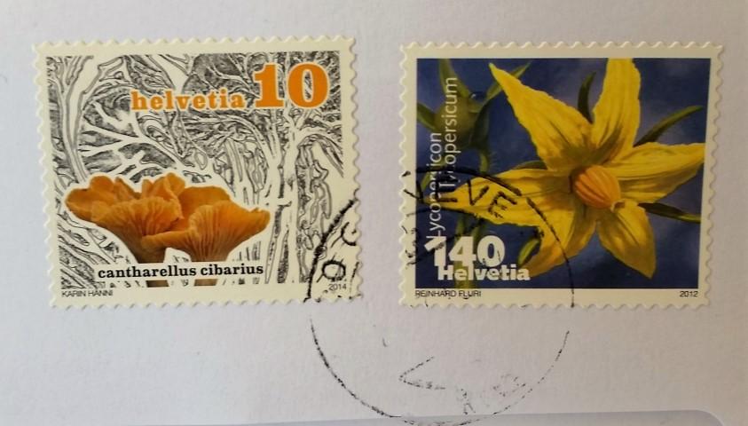 Cantharellus cibarius francobollo svizzero 2012