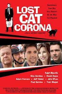 Lost Cat Corona Poster
