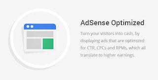 steady income adsense optimized