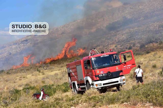 Υψηλός στην Αργολίδα ο κίνδυνος εκδήλωσης πυρκαγιάς