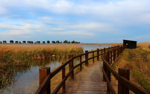 Laguna de les Olles