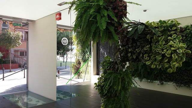 taller mantenimiento jardines verticales madrid