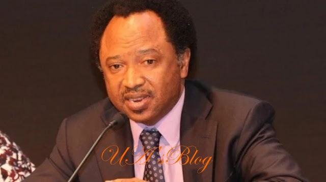Shehu Sani condemns list of invitees for MKO Abiola's GCFR award