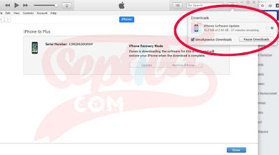 Cara Install Ulang Atau Flash iPhone (Stuck di Logo Apple)