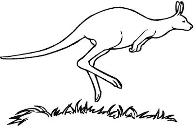 Gambar mewarnai kanguru - 3