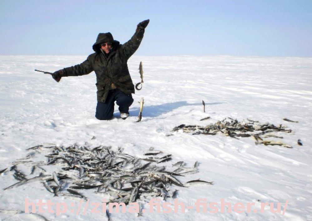 зимняя рыбалка водоемы
