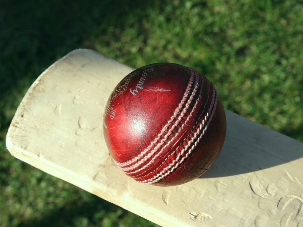 cricket - photo #41