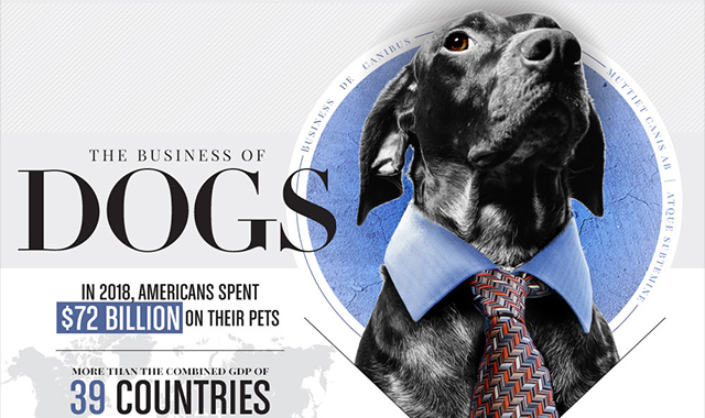 The Business of Dogs