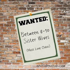 http://www.nextlifenokids.com/2013/10/now-hiring-between-8-10-sister-wives.html