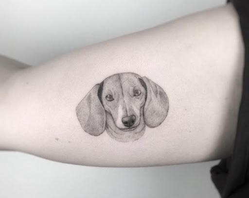 Este preto e cinza tinta dachshund tatuagem