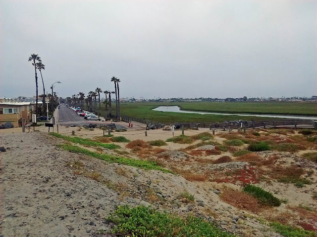Tijuana River mouth Seacoast Drive