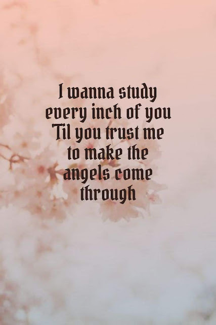 I wanna study every inch of you  'til you trust me to make the ngels come through