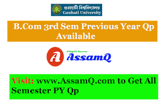 Bachelor Of Commerce Gauhati University Major & Pass course Previous Year Question Papers