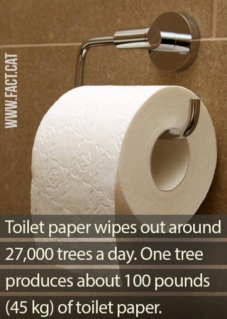 Fakta Mengerikan Di Dunia