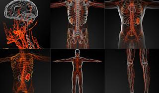 Τι είναι η αταξία Φρίντριχ που παραλύει το νευρικό σύστημα