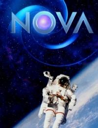 Nova 43 | Bmovies