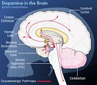 Informasi Musik: Dopamine