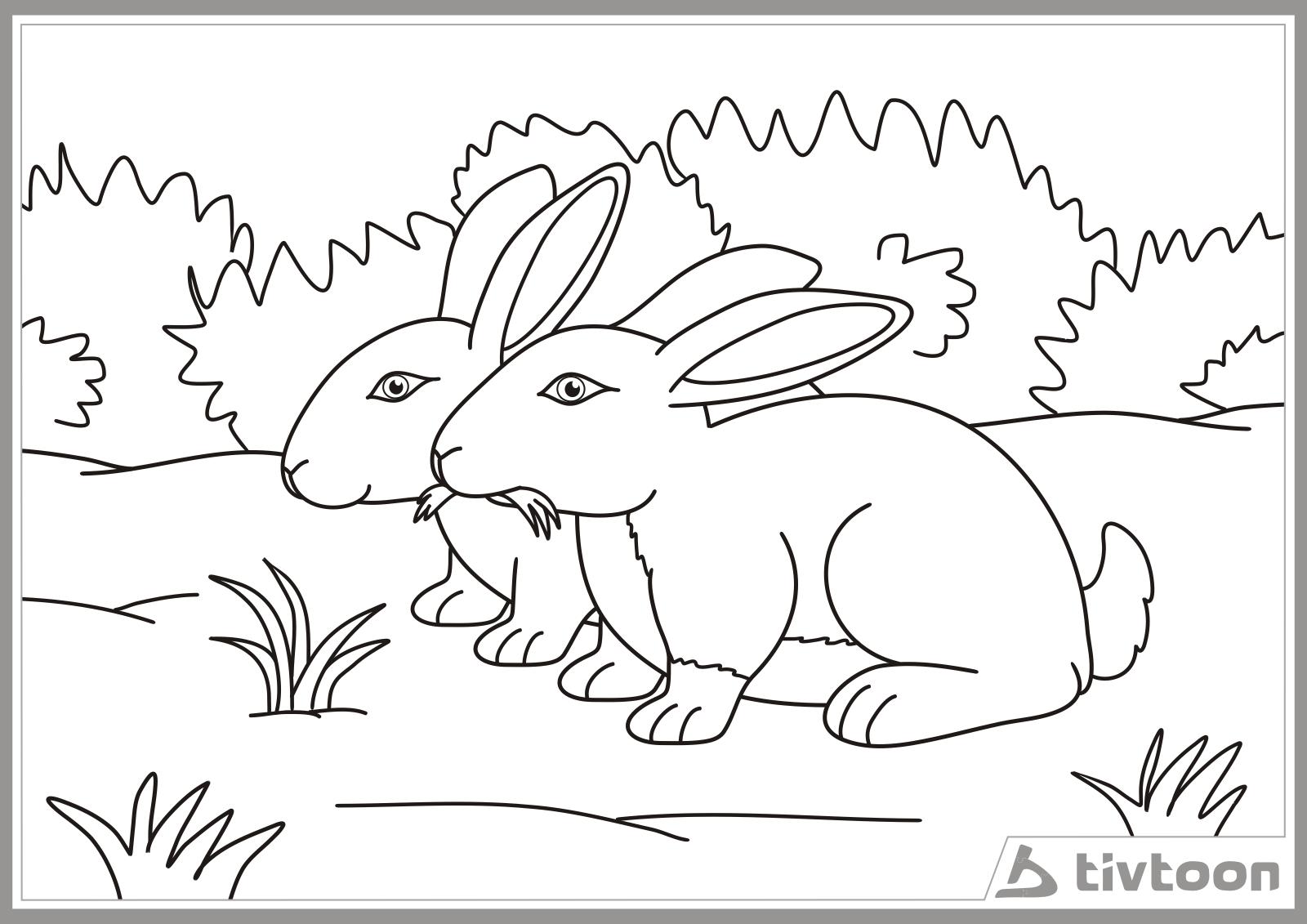 Contoh Gambar Ilustrasi Kelinci