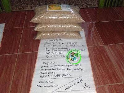 Benih Padi Pesanan    SUSILO WIBOWO Probolinggo, Jatim    Benih Sebelum di Packing.