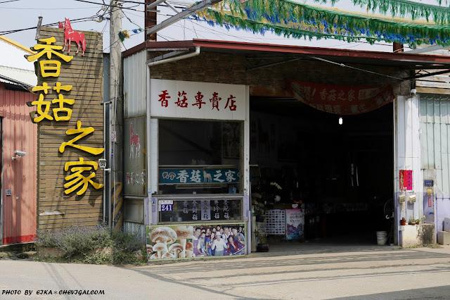 MG 1553 - 台中新社│香菇之家,新鮮現炸香菇超多汁!採菇也能好吃又好玩!
