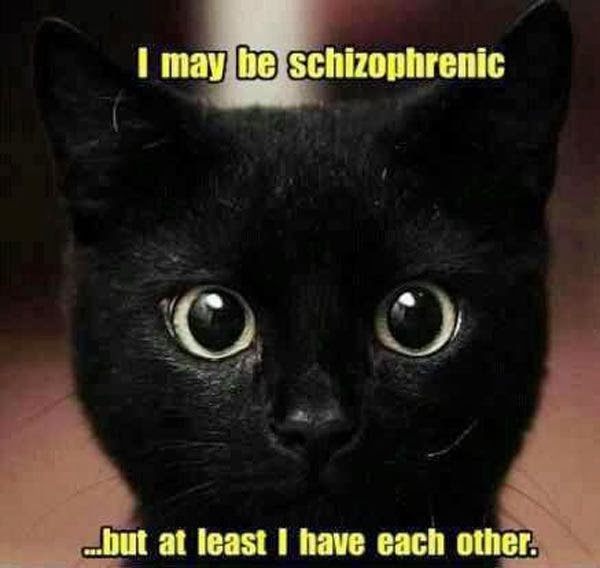 Funny Schizophrenic Cat Joke Picture - I may be schizophrenic, but at least I have each other