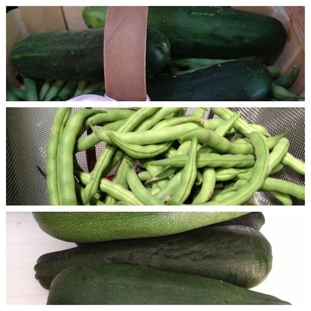 zucchini green beans cucumbers